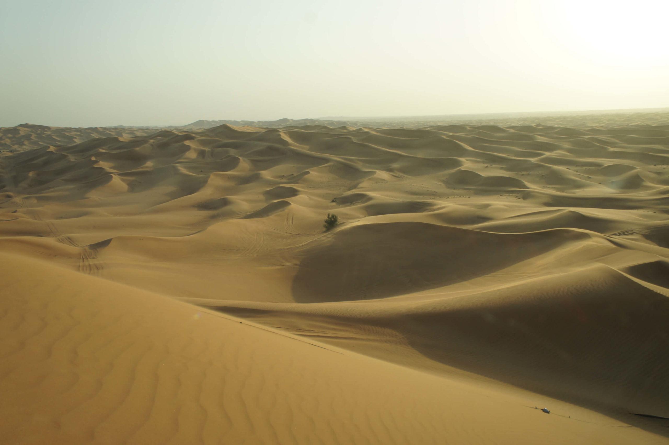 Sharjah – UAE