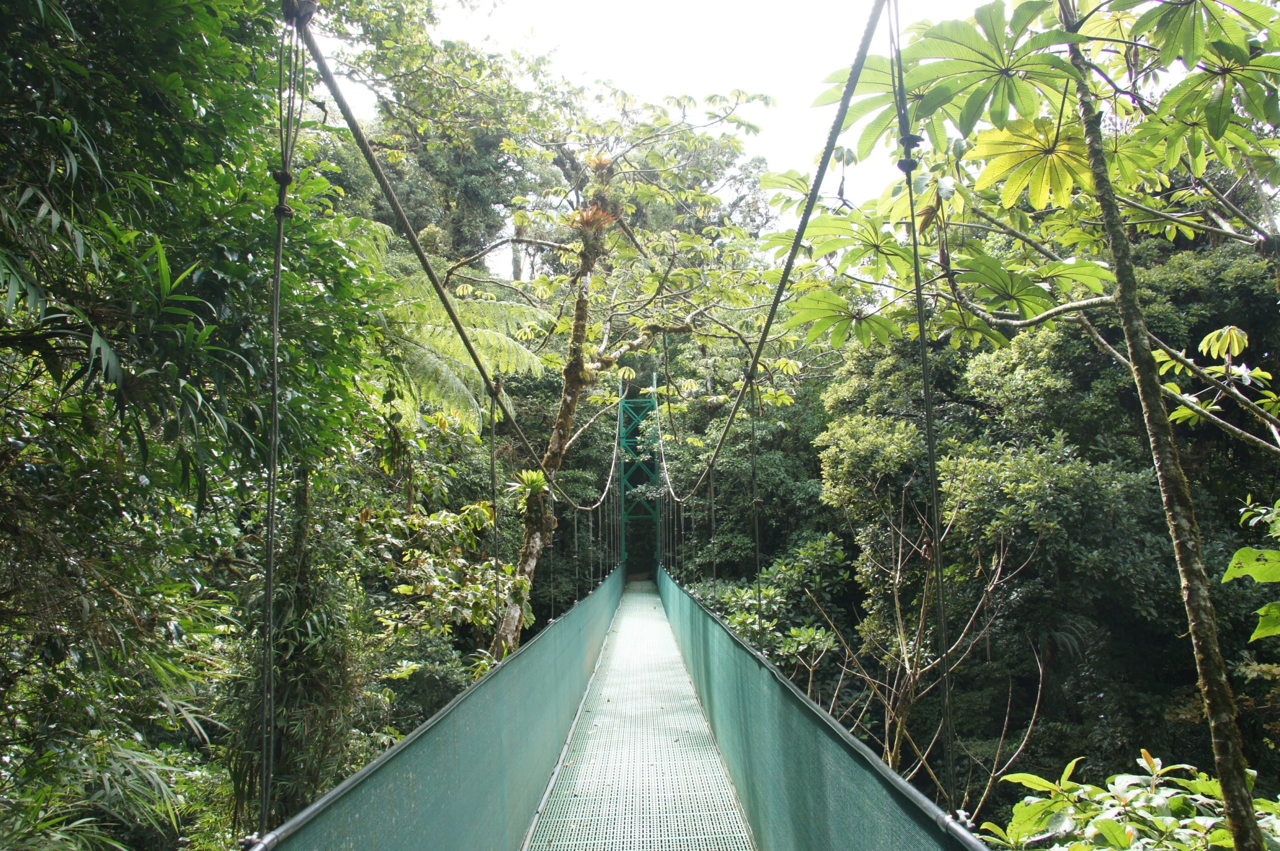 Monteverde and Arenal – Costa Rica