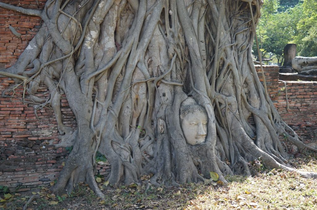 Ayutthaya – Thailand