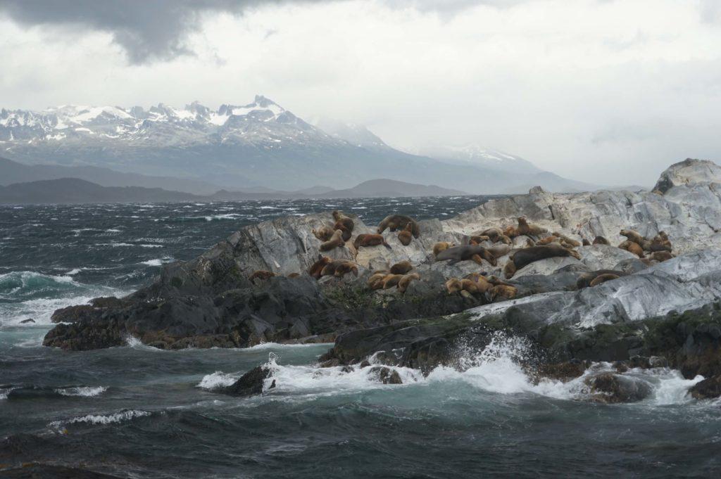 Tierra del Fuego – Argentina
